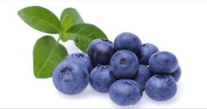 Mustikka, Bilberry facts